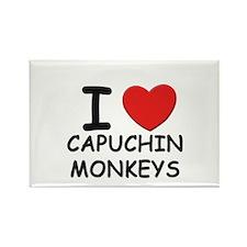 I love capuchin monkeys Rectangle Magnet