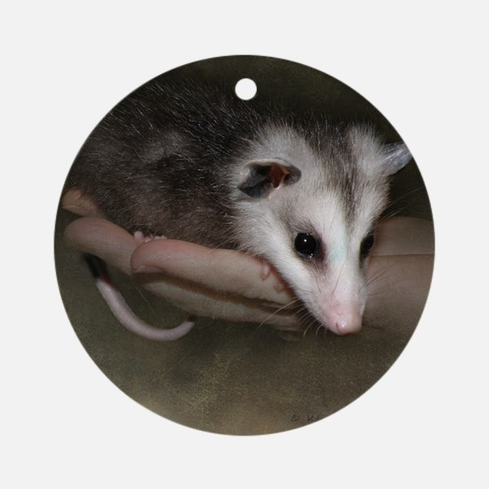 Possum child SQ 10 Round Ornament