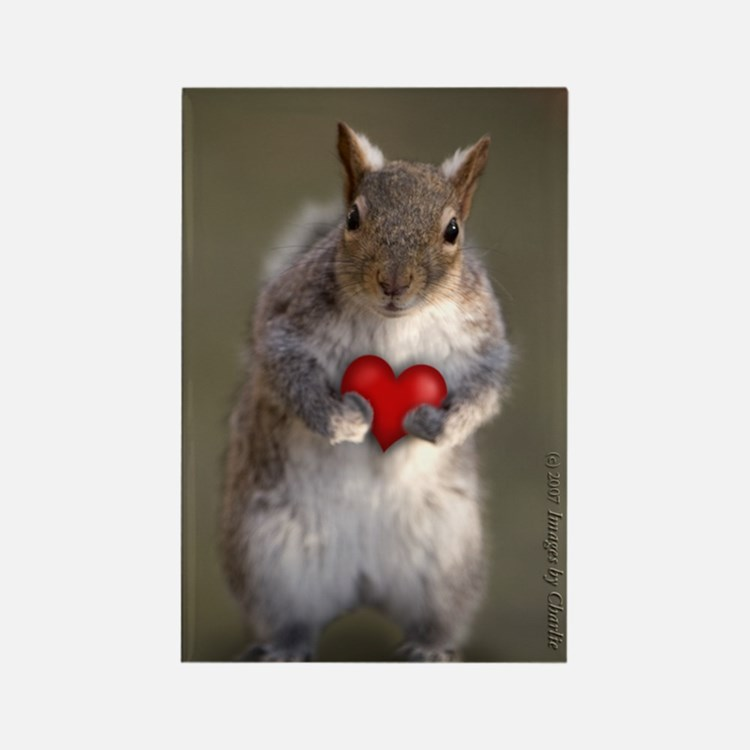 Squirrel Lover's Rectangle Magnet