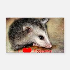 Possum Grunge Rectangle Car Magnet