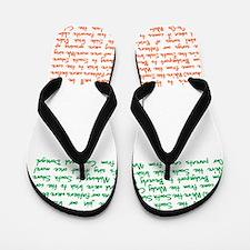 ssi song Flip Flops