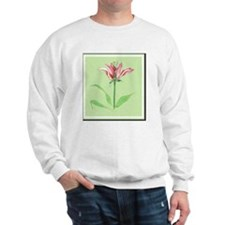 Botanical Illustration Sweatshirt