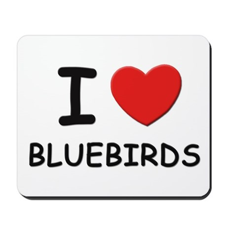 I love bluebirds Mousepad