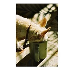morning coffee Postcards (Package of 8)