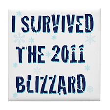 blizzard20112 Tile Coaster