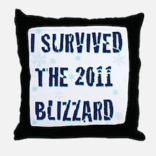 blizzard20112 Throw Pillow