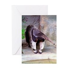 (12p) Giant Anteater Front Greeting Card