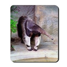 (12p) Giant Anteater Front Mousepad