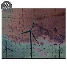 Wind Farm Puzzle
