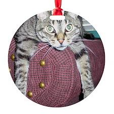 025_25 Ornament