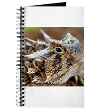 Cool Toads Journal