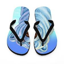 polarbear_poster Flip Flops