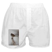 sospIMG_5554 Boxer Shorts