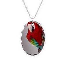 bigredIMG_8201 Necklace