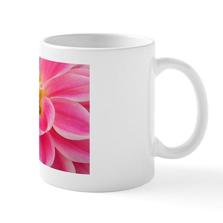 DSCN1579c Mug