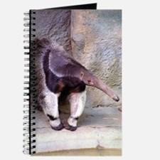 (13) Giant Anteater Front Journal