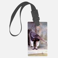 (13) Giant Anteater Front Luggage Tag