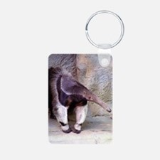 (13) Giant Anteater Front Keychains