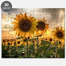 Sunflower Starburst Puzzle