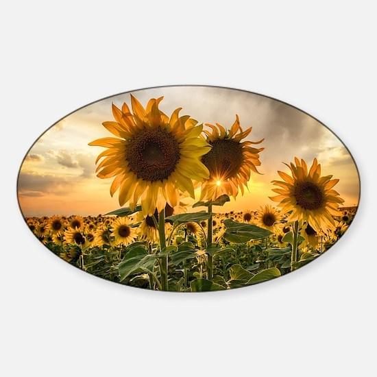Sunflower Starburst Sticker (Oval)