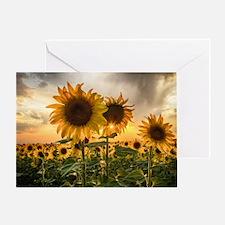 Sunflower Starburst Greeting Card