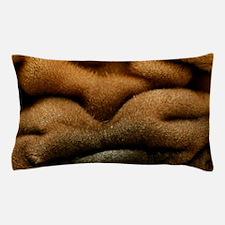 blanket12 Pillow Case
