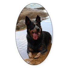 ACD at the Beach Decal