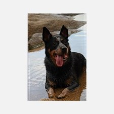 ACD at the Beach Rectangle Magnet