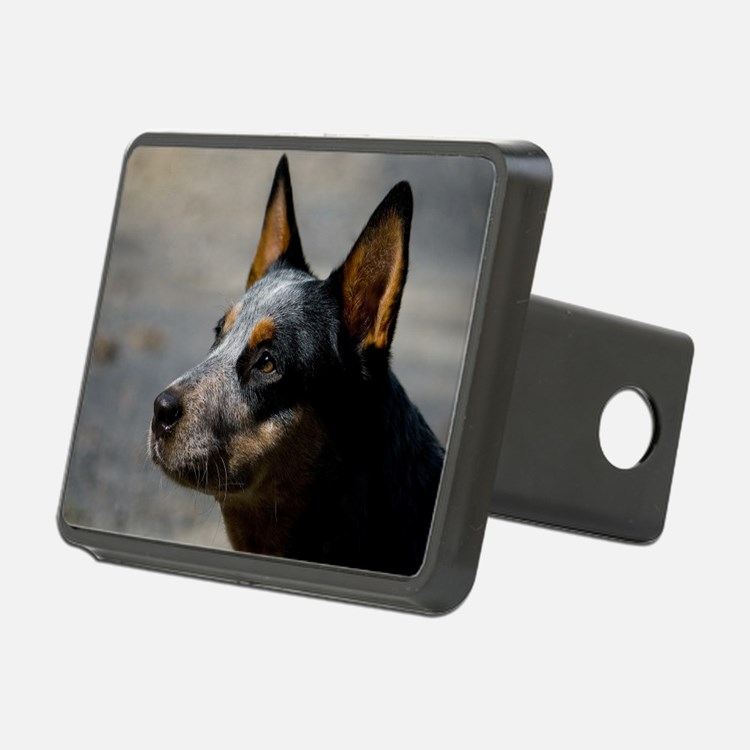 Australian Cattle Dog Hitch Cover