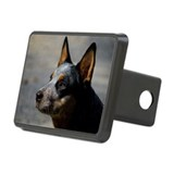 Blue heeler dog Rectangle