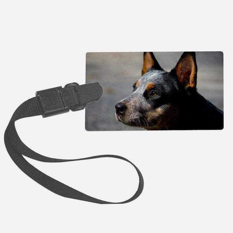 Australian Cattle Dog Luggage Tag