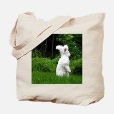 2-nuageboarder23x35_print Tote Bag