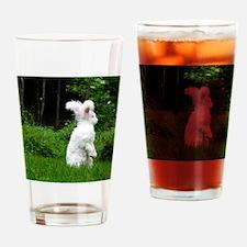 2-nuageboarder23x35_print Drinking Glass