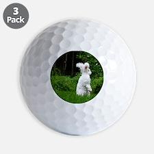 2-nuageboarder23x35_print Golf Ball