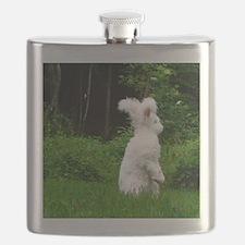 2-nuageboarder23x35_print Flask