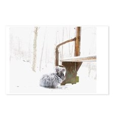 23x35_printFatssnow Postcards (Package of 8)