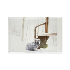 23x35_printFatssnow Rectangle Magnet
