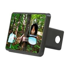 mail6x4_pcard Hitch Cover