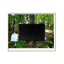 mail16x20_print Picture Frame