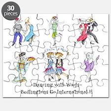 Shirts-light-Dancing Bedlies Puzzle