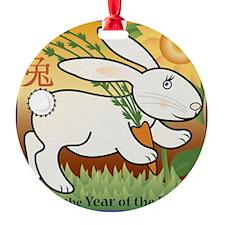 RabbitTshirt Ornament
