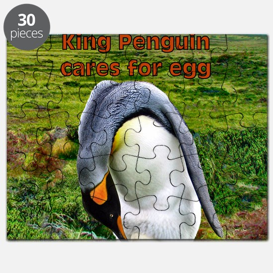 King Penguin cares for egg - sq. Puzzle