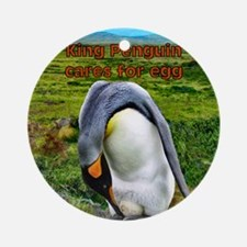 King Penguin cares for egg - sq. Round Ornament