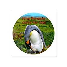 """King Penguin cares for egg  Square Sticker 3"""" x 3"""""""