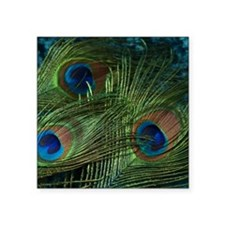 """green feather square Square Sticker 3"""" x 3"""""""