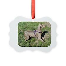 SedonaWeimaraner2 Ornament