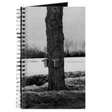 Maple Tree Journal