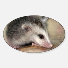 PossumLove Decal