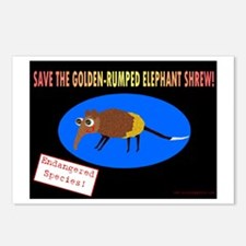 Save the Golden Rumped Elephant Shrew Postcards (