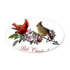 12 X T cardinals 200 dpi Oval Car Magnet